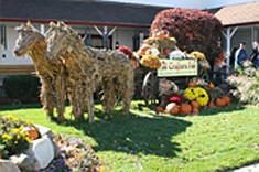 Fall Crafters Fair - Indiana